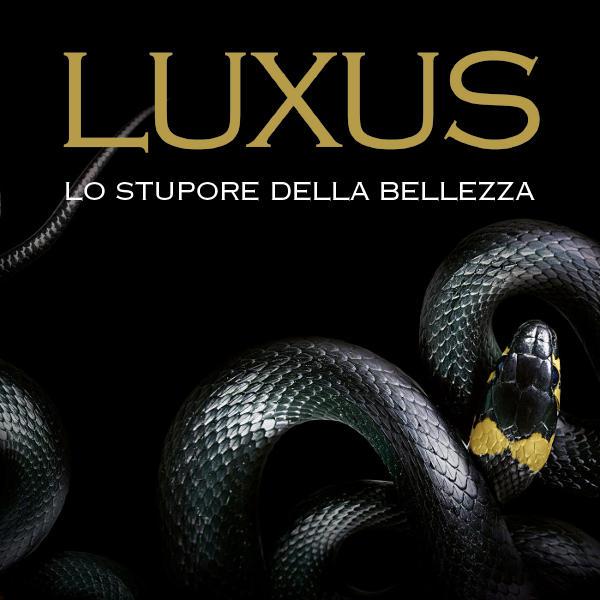Luxus. Lo Stupore della Bellezza